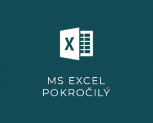 MS Excel III pokročilý