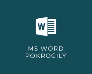 MS Word II pokročilý